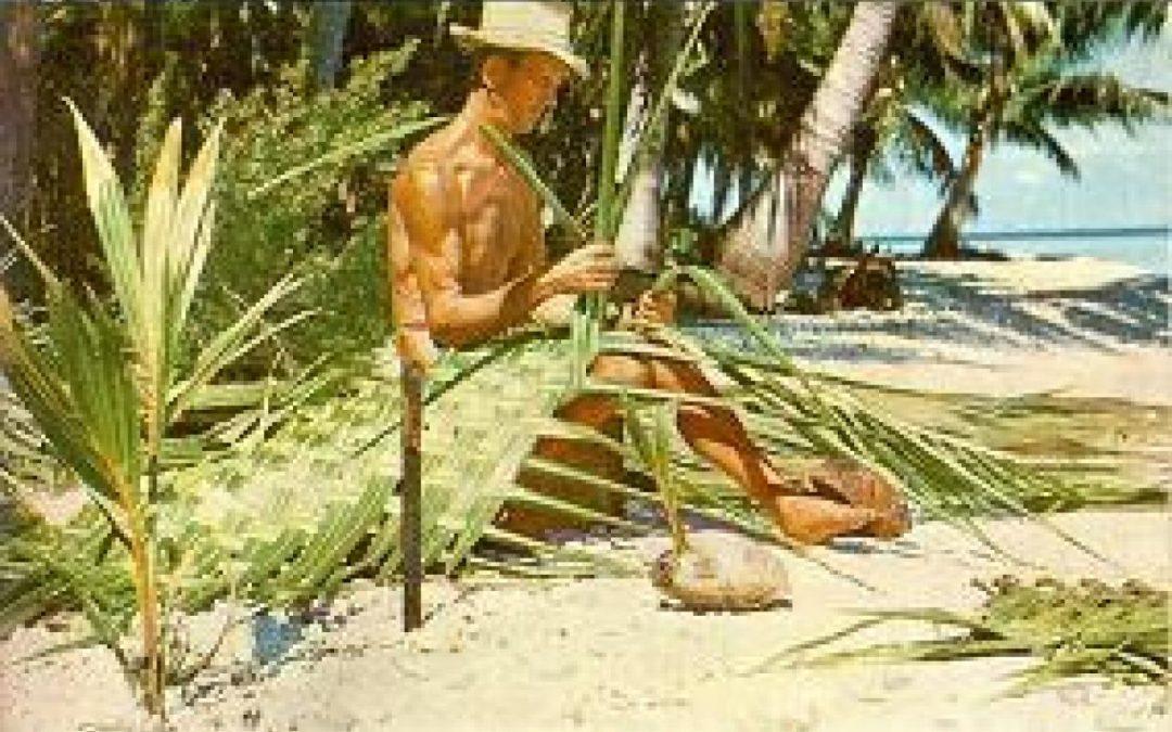 O extraordinário eremita da ilha